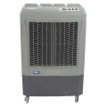 Where to rent FAN EVAPORATIVE COOLER MC37M HESSAIRE in Arlington TX