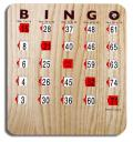 Where to rent BINGO GAME CARDS in Arlington TX